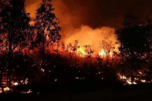 incendi queensland australia