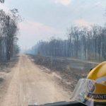 """Australia, Queensland in ginocchio per 138 incendi: """"La gente brucerà fino alla morte. È come un ciclone di 5ª categoria diretto proprio verso la vostra porta"""" [FOTO]"""