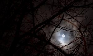 Attività paranormale luna