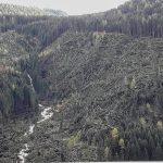 """Maltempo, distrutta anche la """"Foresta dei Violini"""" di Stradivari della Val Saisera a Tarvisio [FOTO]"""