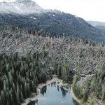 Maltempo Trentino, Dolomiti stravolte: milioni di alberi abbattuti dalla furia dei venti [FOTO e VIDEO]