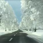 Prove d'inverno in Romania: meravigliose scene di paesaggi e città imbiancate dalla neve che ha creato non pochi disagi [FOTO e VIDEO]