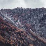 Maltempo e crollo termico: prima nevicata a Cortina, fiocchi anche ad Aosta [GALLERY]