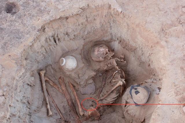 I resti rinvenuti dalla missione italo-statunitense: la posizione delle ossa fa supporre che donna e bambino siano morti durante il parto