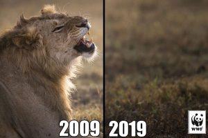 #10yearschallenge leoni