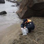 """Maxi spiaggiamento di Gamberetti a Ischia, le prime analisi della Guardia Costiera: """"fenomeno anomalo, improbabile che dipenda dall'inquinamento"""" [FOTO]"""