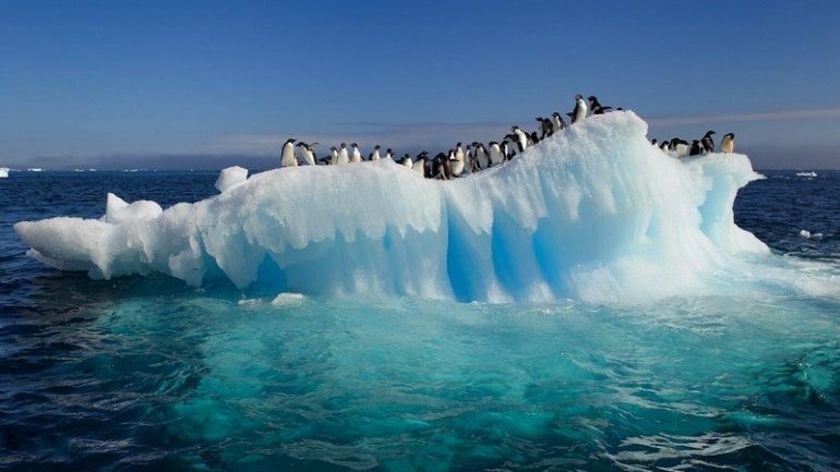 ghiaggio-antartide-pinguini-riscaldamento-globale