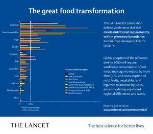 lancet-commissione-alimentazione-ambiente