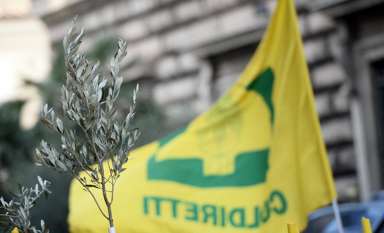 Ministero delle Politiche Agricole. Manifestazione di Coldiretti