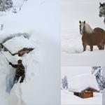 Dalla Scandinavia alla Grecia, l'Europa nella morsa di una potente tempesta di neve: bufere e valanghe in Austria, venti e inondazioni in Germania e Olanda. 13 vittime e caos totale [FOTO]