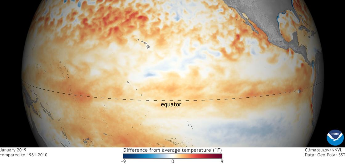 El Niño 2019