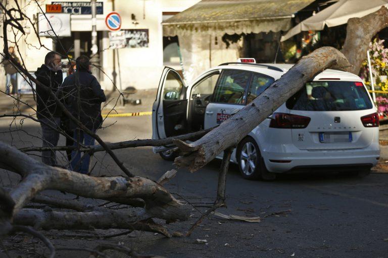 Foto Cecilia Fabiano  - LaPresse 23-02-2019 Roma ( Italia ) Cronaca:Albero caduto per il forte vento su un taxi a viale trastevere Nella foto : il ramo caduto sul taxi