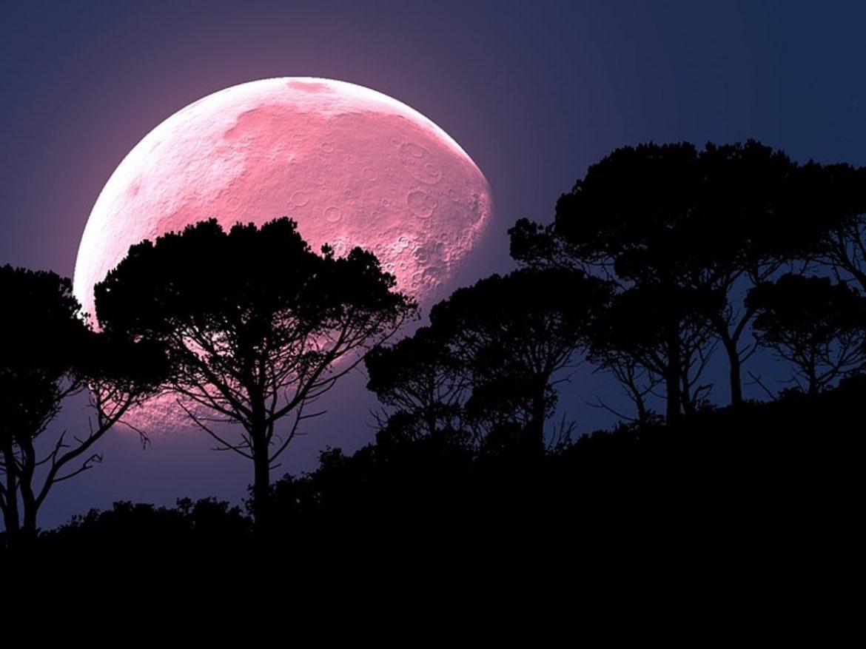 luna piena della fragola