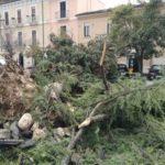 Maltempo, fortissimi venti seminano caos e distruzione in Abruzzo: case scoperchiate e alberi abbattuti [FOTO e VIDEO]