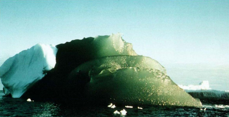 iceberg verdi