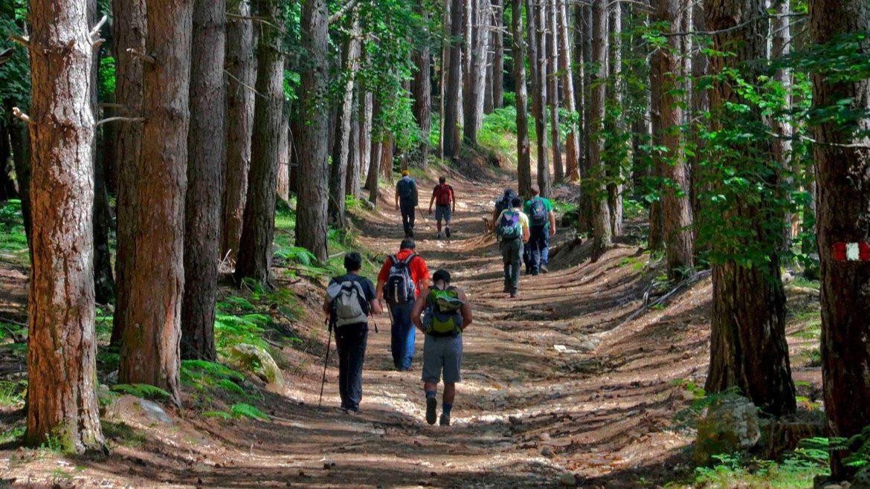 Sentiero del Brigante Parco Aspromonte
