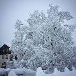 Inizio Aprile shock sulle Alpi, un metro e mezzo di neve fresca: FOTO e VIDEO impressionanti da Formazza, Cervinia e Madesimo [GALLERY]