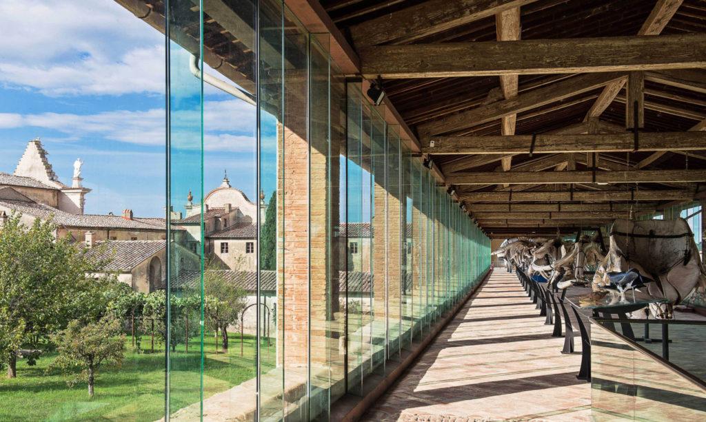 La galleria dei cetacei Museo Storia NAturale Calci Pisa (foto di Giovanna Passerai)