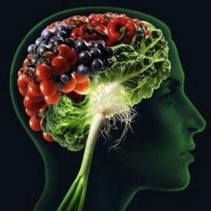 dieta vegetariana cervello