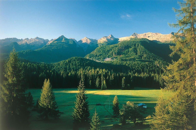 Paneveggio Foresta catena del Lagorai