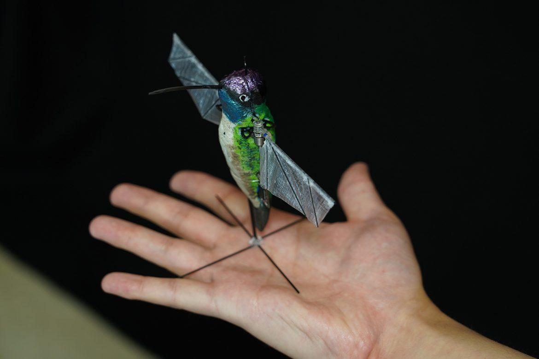 hummingbird robot colibrì