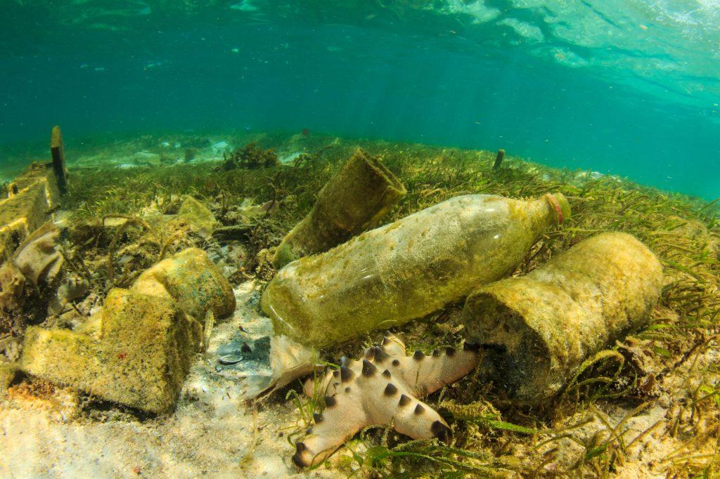 inquinamento mare plastica big