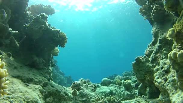 oceano caverna