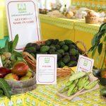 Caldo, boom di frutti esotici italiani: dal mango alle banane, aumento enorme dei terreni coltivati in Sicilia e Calabria