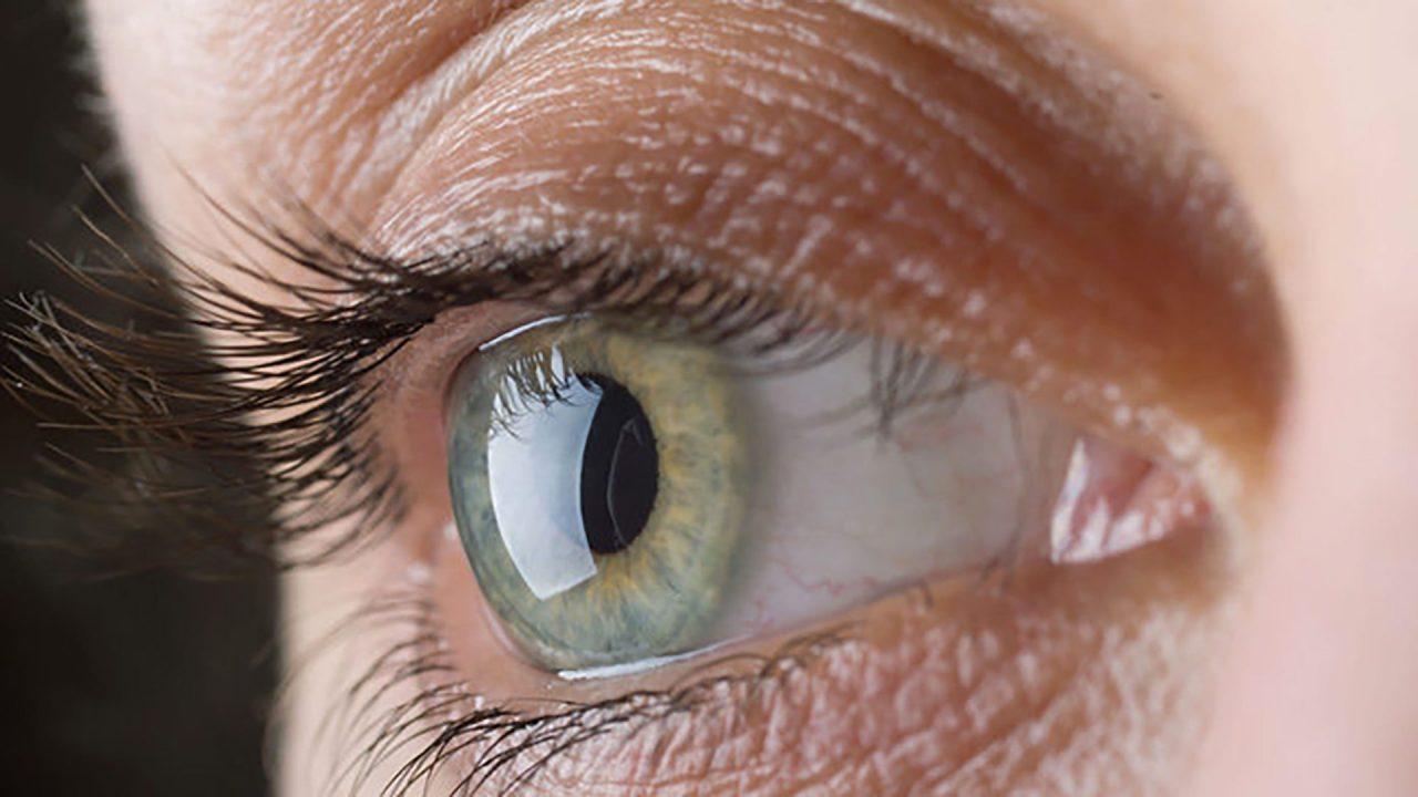Esiste L Asse Intestino Occhio Il Ruolo Del Microbioma Oculare Sulla Salute E Sulla Vista Meteoweb