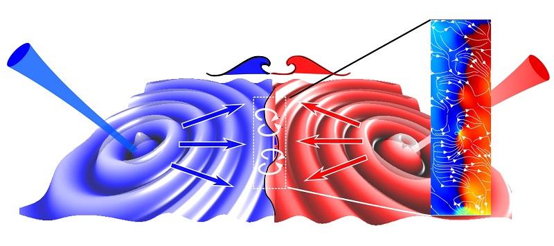 Fluidi quantistici di luce