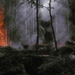 Amazzonia devastata dagli incendi, 72.000 roghi da Gennaio: interi ettari rasi al suolo e animali carbonizzati, brucia il polmone verde del mondo [FOTO]