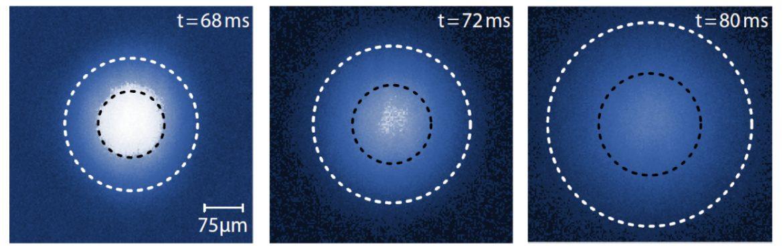 asimmetria quantistica