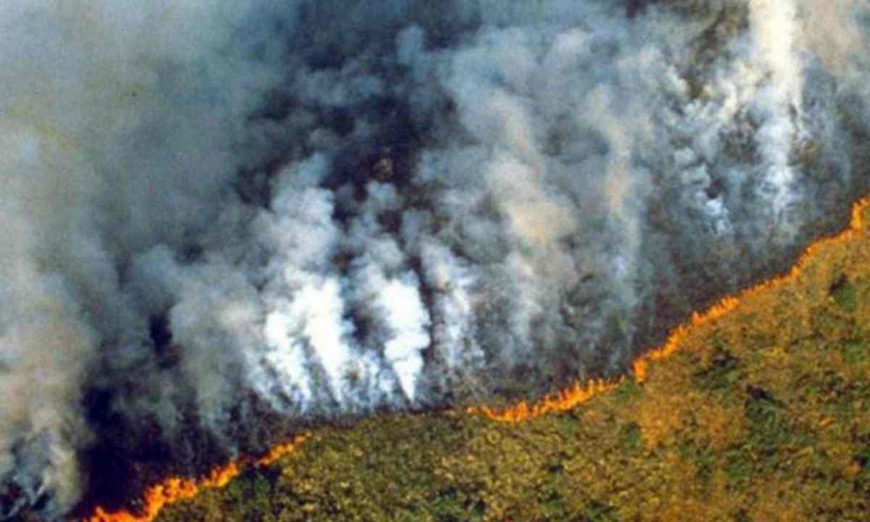 incendi/o/amazzonia