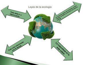 eco/logia