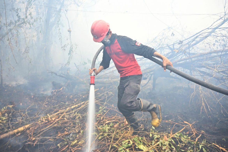 Emergenza incendi in Indonesia
