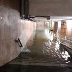Maltempo in Liguria: allagamenti e alberi caduti, viabilità autostradale e ferroviaria in tilt [FOTO e VIDEO]