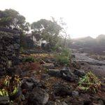 Uragano Lorenzo, situazione drammatica alle Azzorre: villaggi rasi al suolo, evacuati e blackout. Le FOTO in diretta