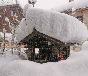 Alpi Neve