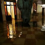 """Dramma a Venezia, la durissima lettera dalla Contessa Dalle Rose: """"Siamo lasciati soli"""""""