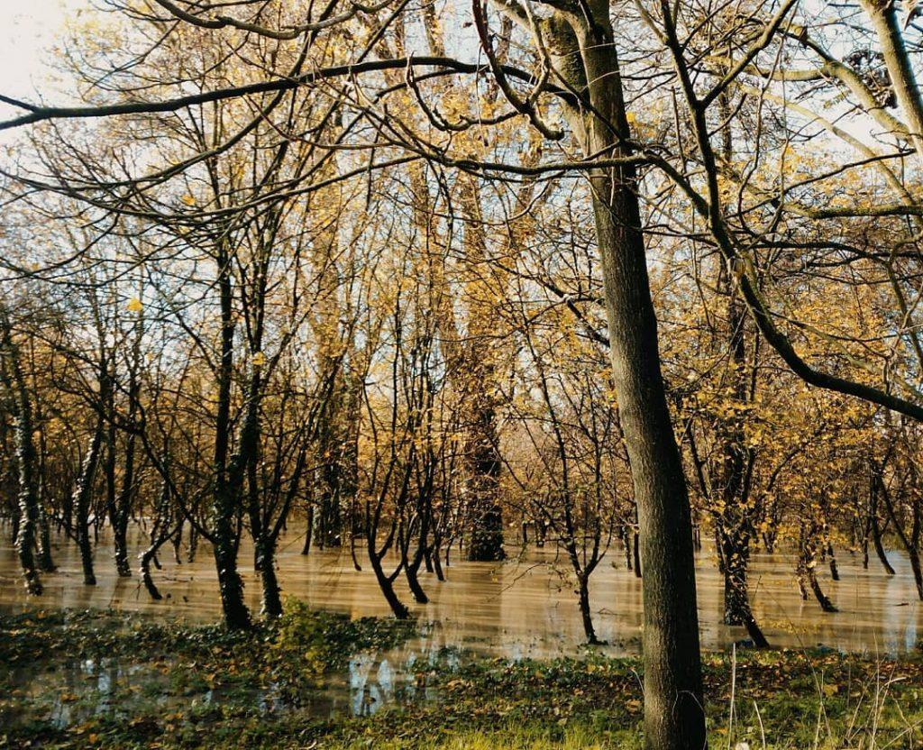 fiume po piena 27 novembre 2019