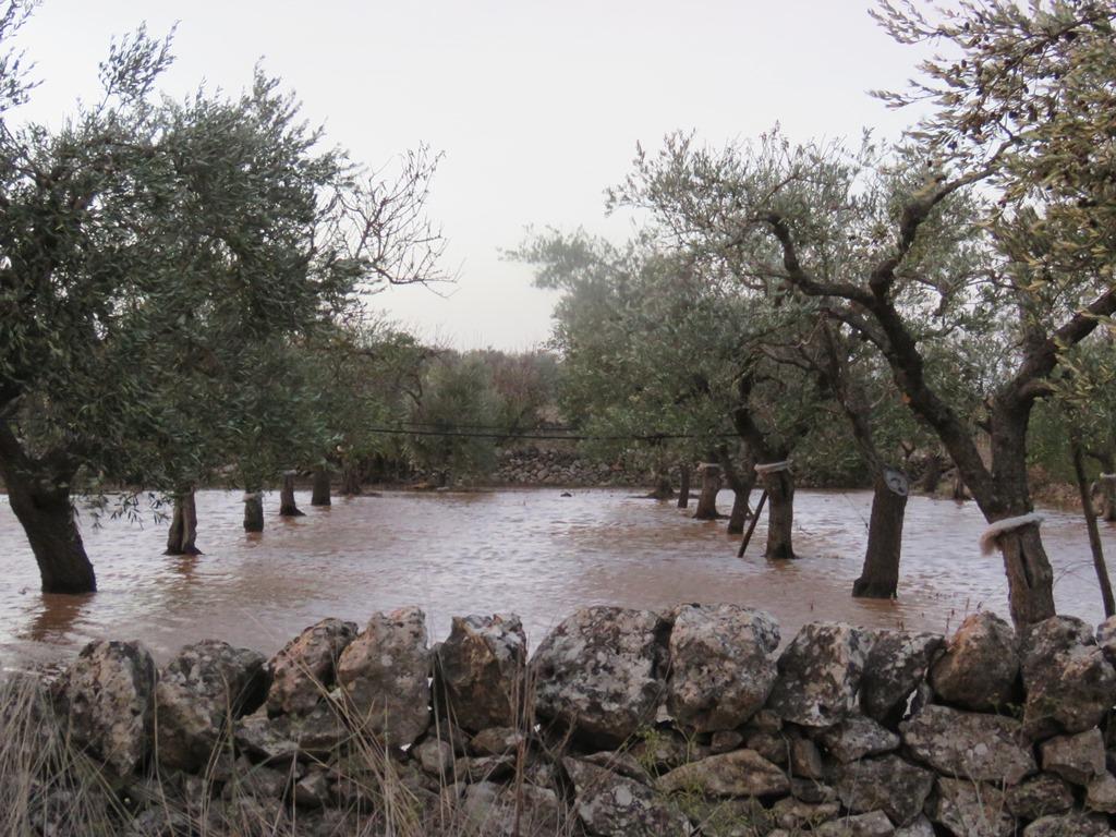 maltempo puglia ciclone mediterraneo 12 novembre 2019
