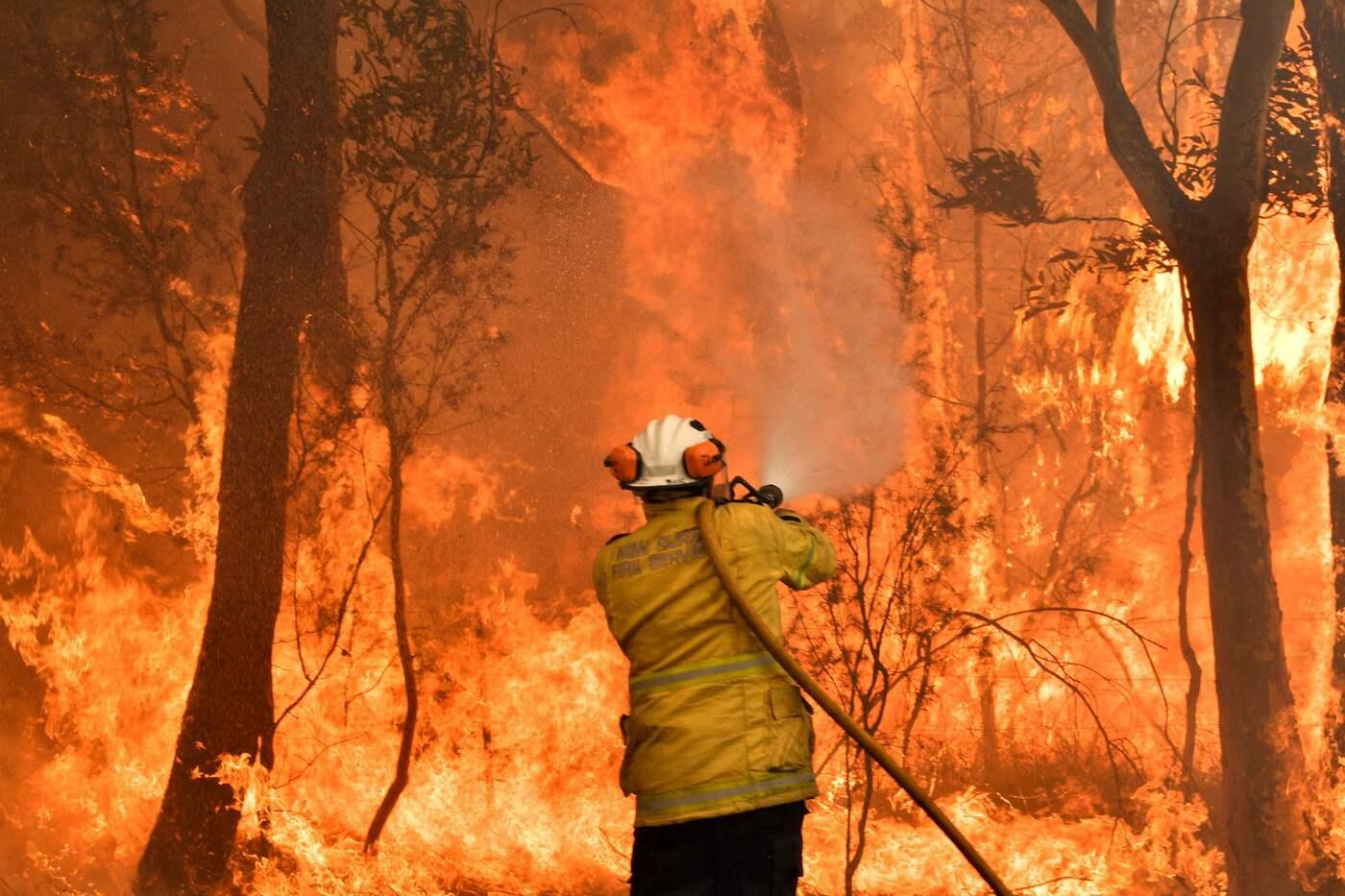Australia, allerta incendi, giorno più caldo di sempre