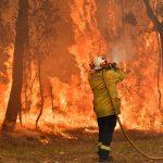 """Emergenza incendi in Australia: la popolazione di Sydney è soffocata dal fumo, """"scene apocalittiche"""" [FOTO]"""