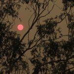 Incendi Australia: 2 roghi si fondono in un'inferno di fuoco nel Sud-Est [FOTO]