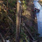 Tempesta Ciara, in Austria venti a 150km/h: devastata un'intera foresta [FOTO e VIDEO]