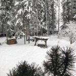 Maltempo, crollano le temperature e torna la neve al Nord-Est: Trentino Alto Adige imbiancato, oltre 30cm sulle Dolomiti [FOTO e VIDEO]