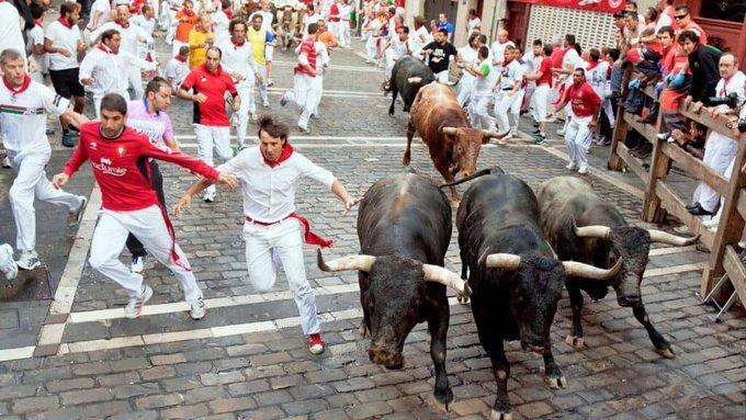 corsa dei tori