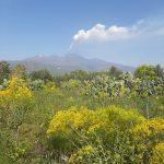 Etna: aumenta l'ampiezza del tremore vulcanico, attività stromboliana e fontana di lava pulsante [FOTO]