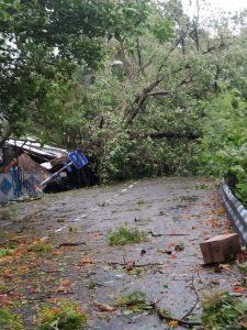 ciclone amphan calcutta