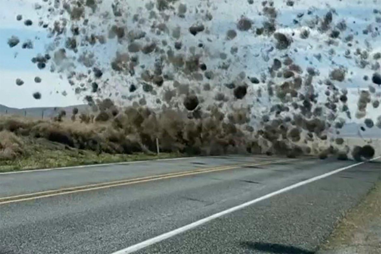 tornado di rotolacampi